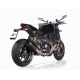 QUAT-D TWIN CARBON FOR MONSTER 1200S - 1200R
