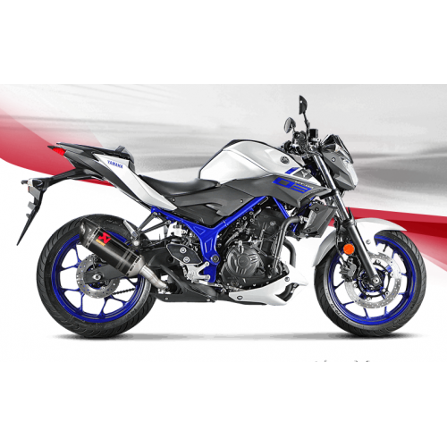CARBON EXHAUST AKRAPOVIC APPROVED