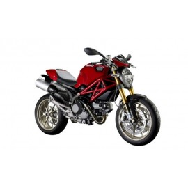 MONSTER 1100  (TODAS)
