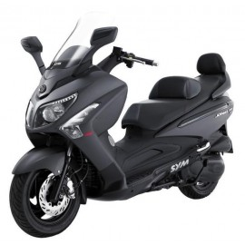 JOYMAX 300 EVO/GTS 2010-11